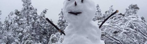 Banana Frosty the Snowman says Welcome to Queensland